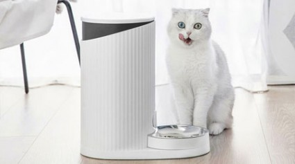 Smart Pet Feeder Was Launched At MiOT Crowdfunding Platform